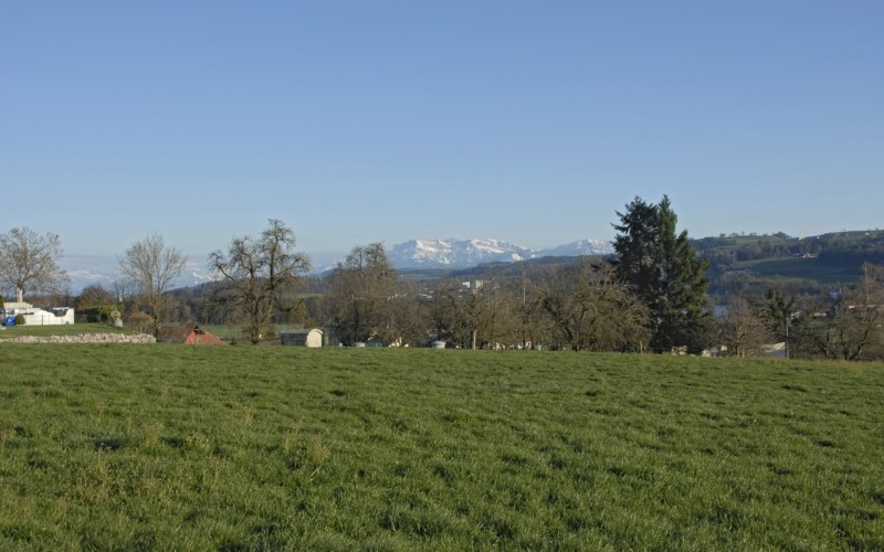 Foto des Grundstücks Rankhof in St. Erhard.