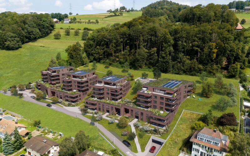 Visualisierung des Projekts Steinbären in Triengen.